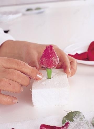 لتزيين الجاتوه استخدمى السكر 1410981618.334083.in
