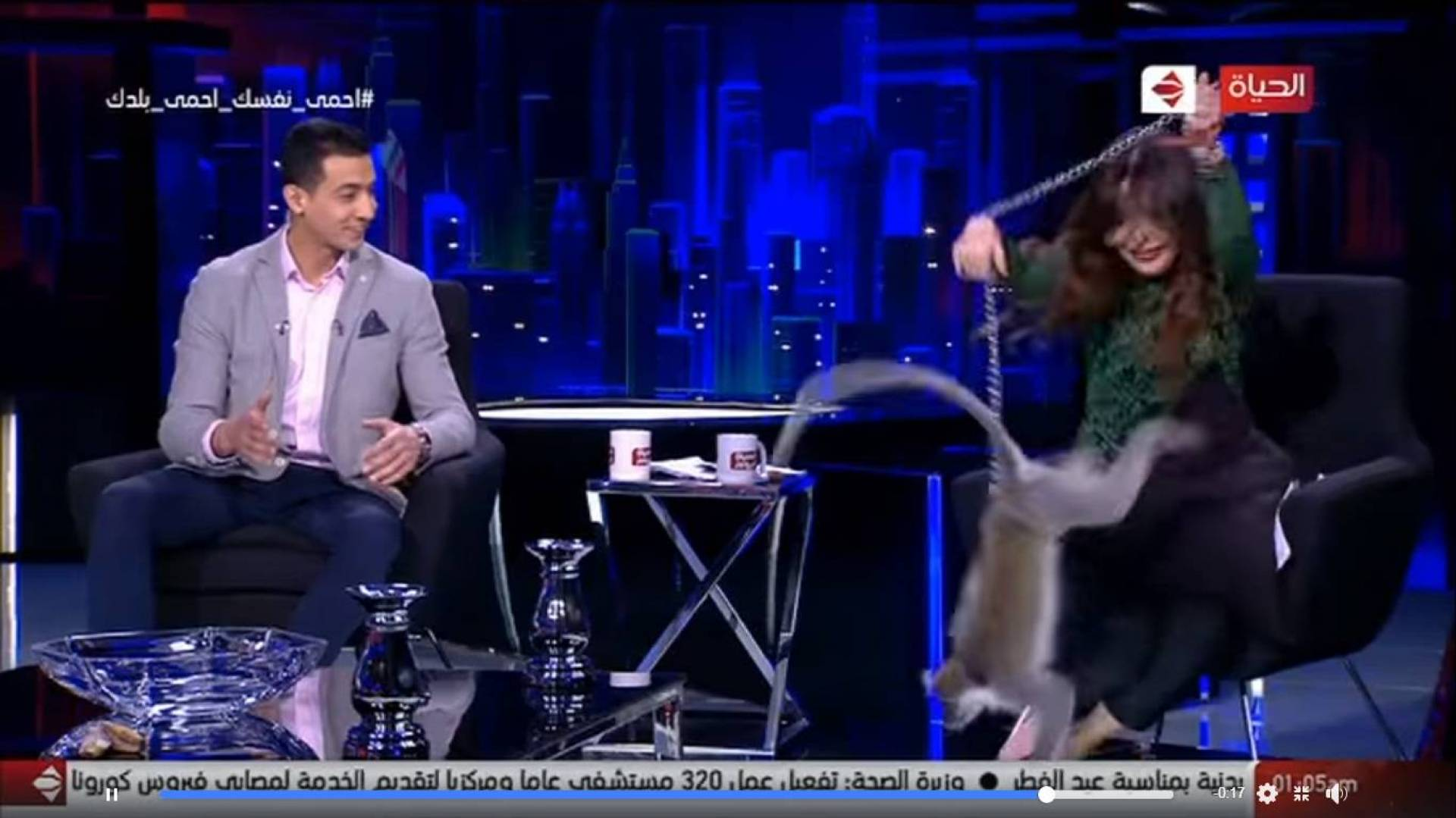 بالفيديو - قرد يهاجم المذيعة لبنى عسل على الهواء   Laha Magazine
